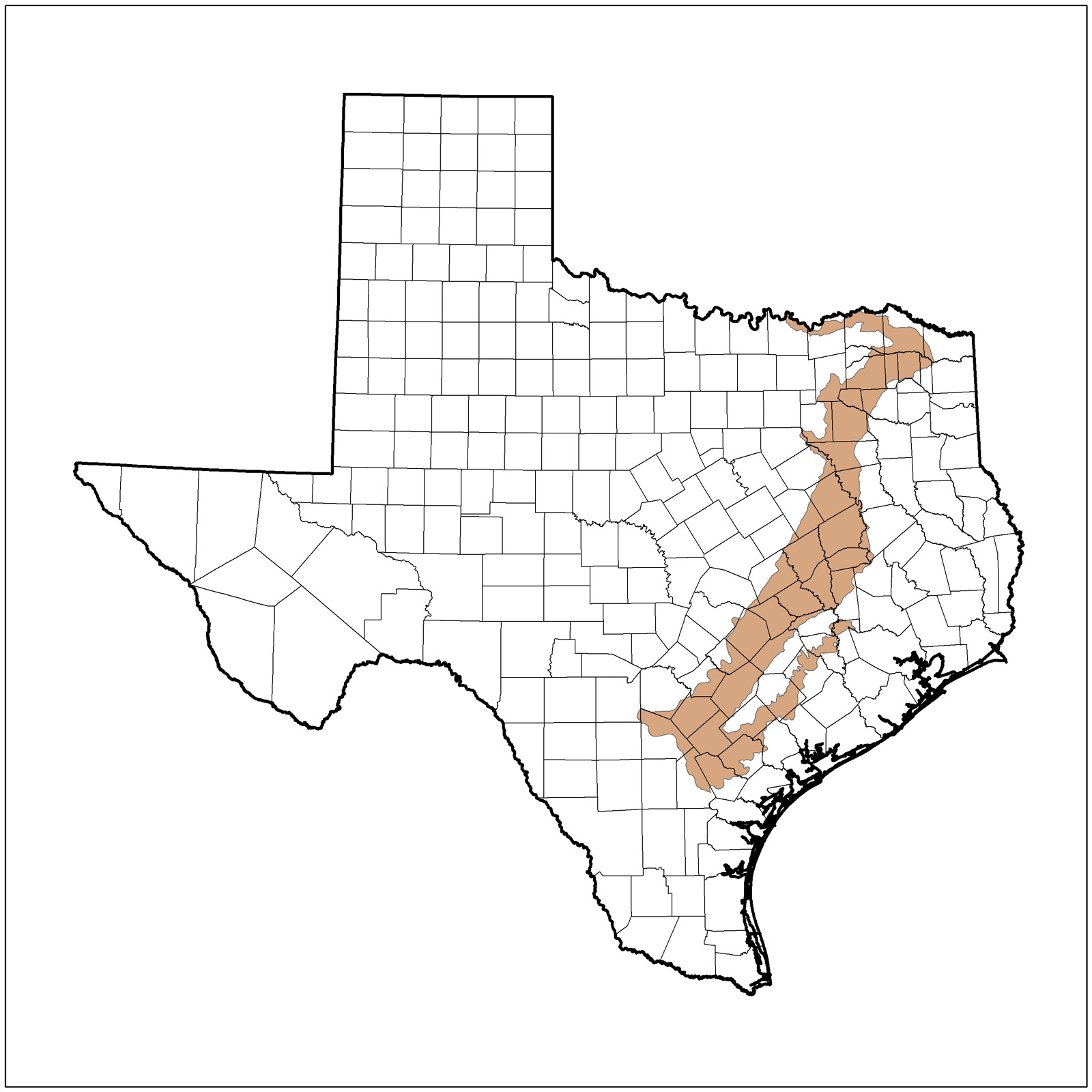 1600x1600 Texas Nature Trackers Target Species