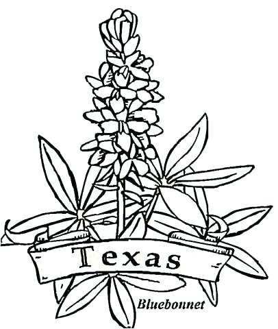 406x480 Texas State Flag Coloring Page Click To See Printable Version