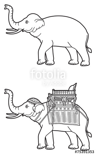 312x500 Thai Elephant Stock Image And Royalty Free Vector Files