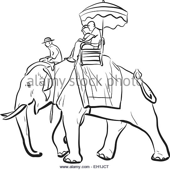 542x540 Thailand Elephant Ride Black And White Stock Photos Amp Images