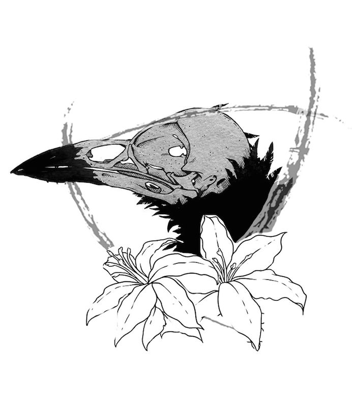 The Raven Drawing