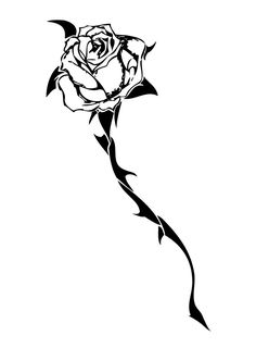 236x320 Gallery Sketches Of Roses With Thorns,