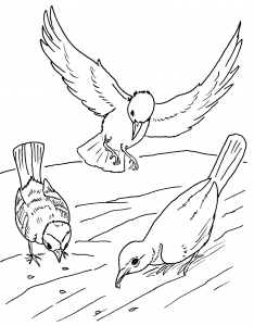 234x300 Animal Coloring Pages For Kids To Print Amp Color