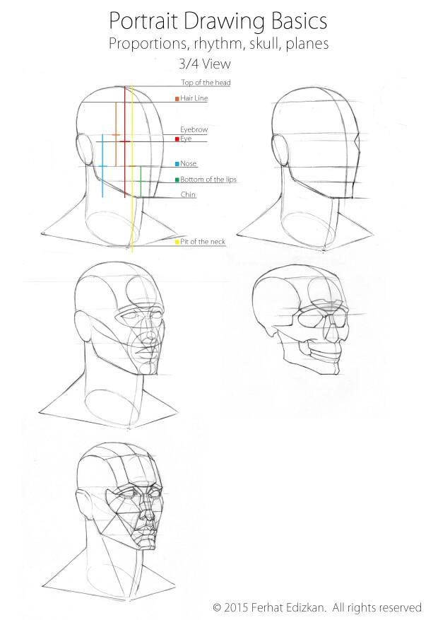 620x877 Portrait Drawing Basics, Three Quarter View Portrait