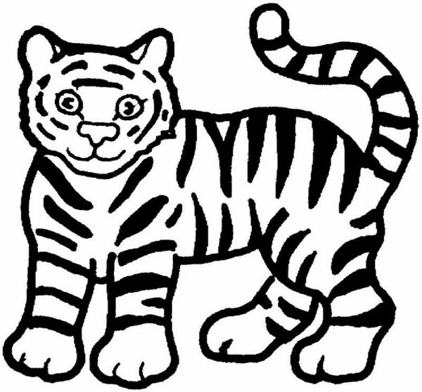 600x558 A Cute Cartoon Drawing Of Tiger Cub Coloring Page