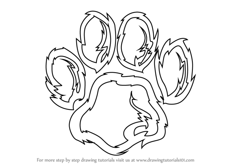 800x567 Learn How To Draw A Tiger Paw (Animals For Kids) Step By Step