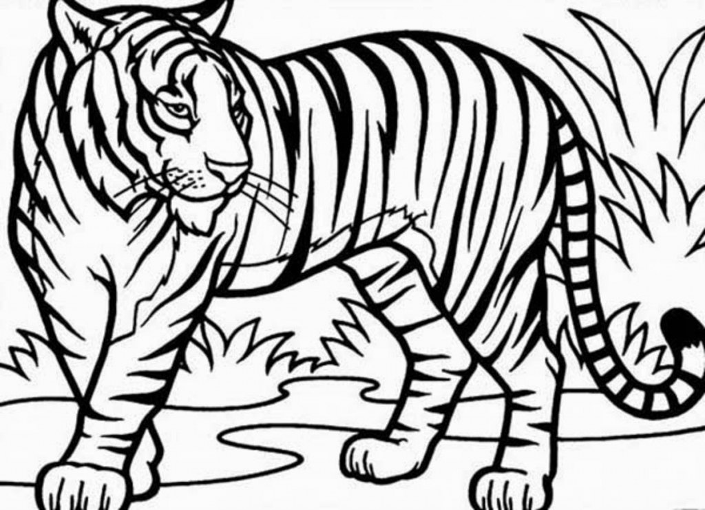 1024x741 Tiger Drawing For Children Coloring Page Of A Tiger Archives