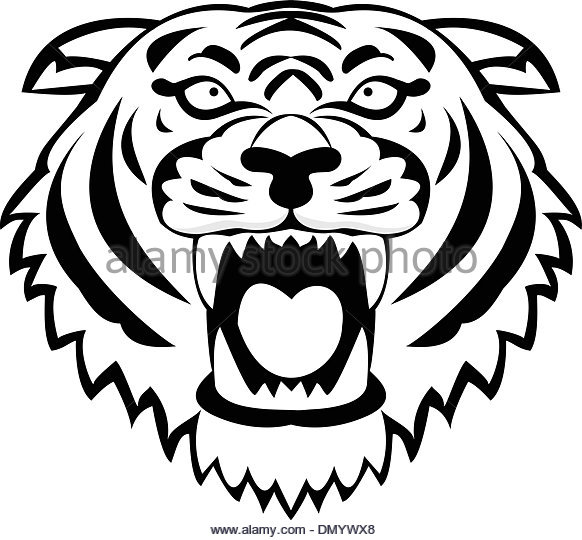 582x540 Tiger Roar Stock Vector Images