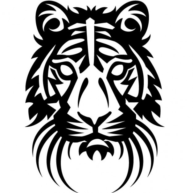 626x626 Tiger Head Drawing Vector Illustration Vector Free Download