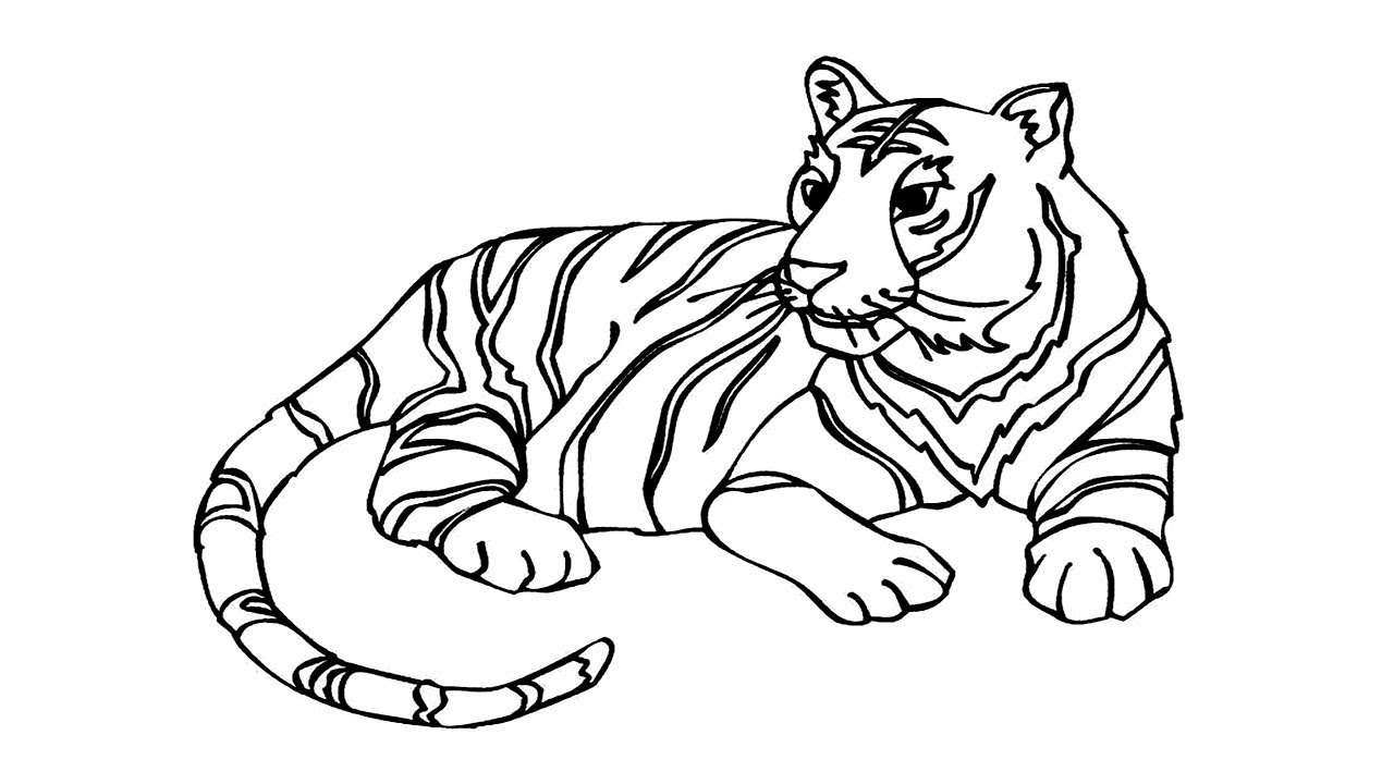 1280x720 Coloring Pages How To Draw A Tiger How To Draw A Tiger Face