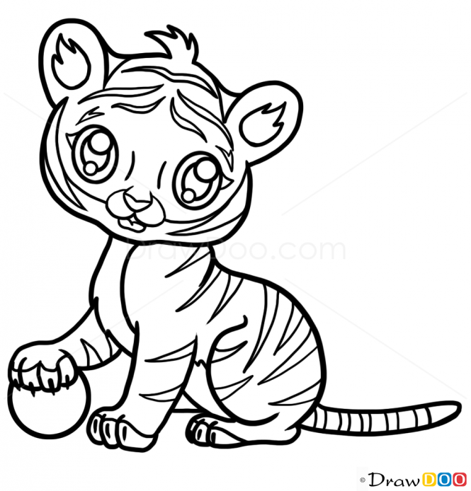 665x694 Drawn Tiger Baby Tiger