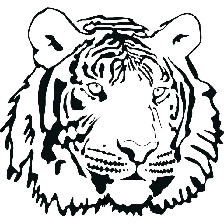 736x736 Cute Tiger Coloring Pages Cute Tiger Coloring Pages Tiger Face Big