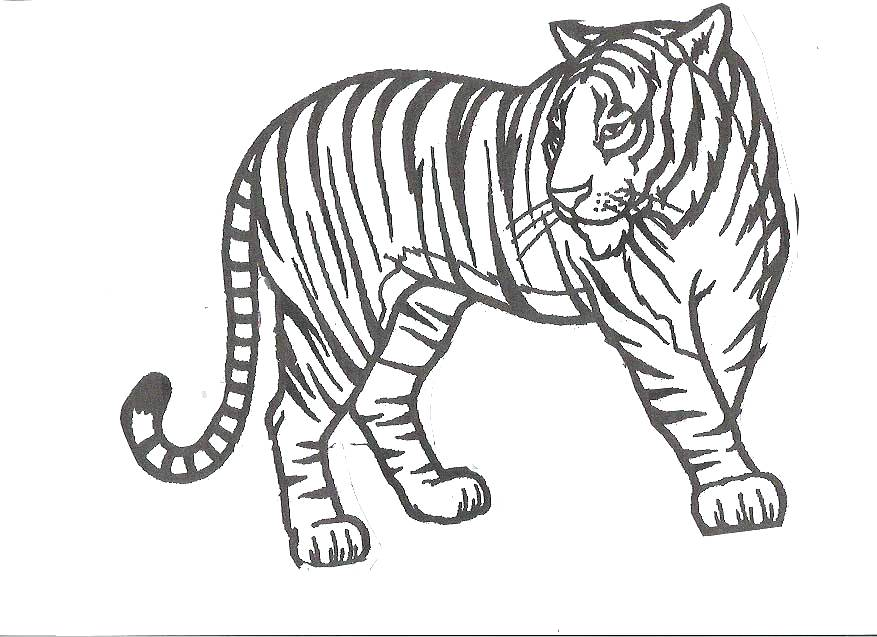 877x637 Cute Tiger Coloring Pages Tiger Eyes Tattoo Cartoon Tiger Coloring