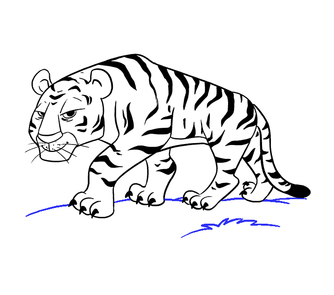 tiger how to draw easy