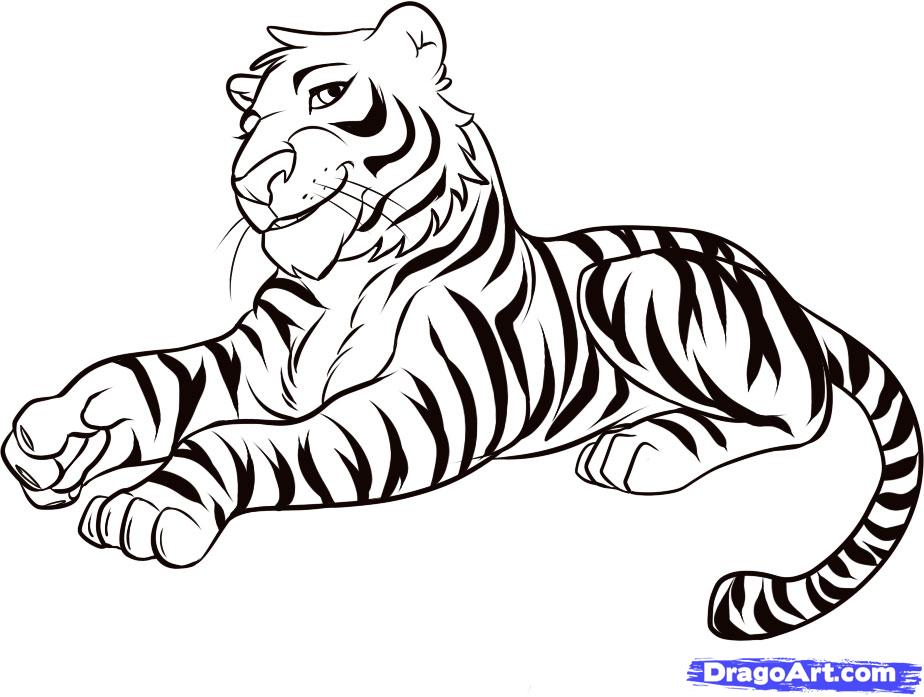 924x697 female tiger drawing