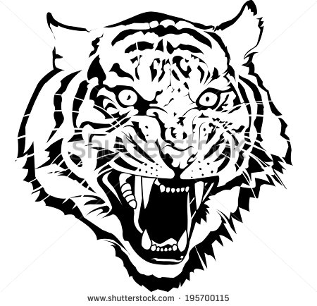 Tiger Eyes Drawing At Getdrawingscom Free For Personal Use Tiger