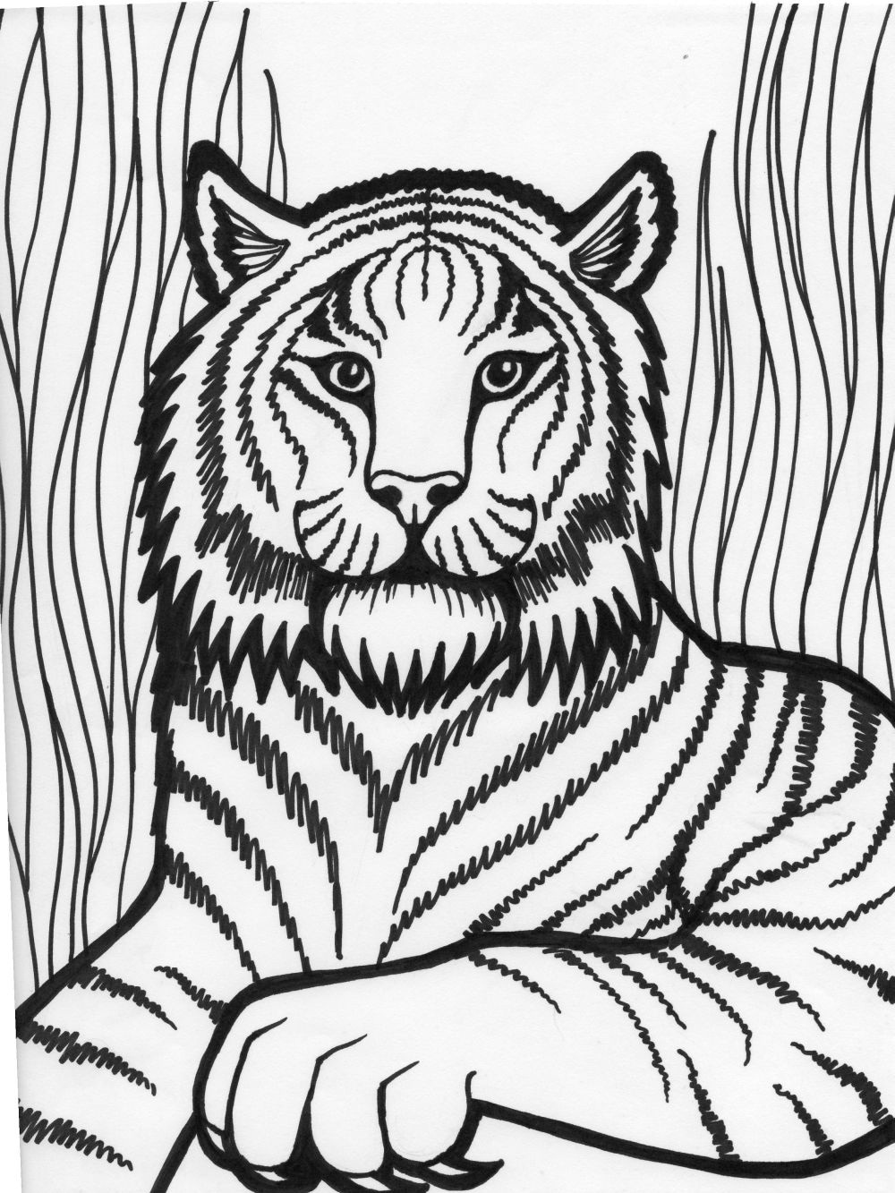 1000x1333 Tiger Coloring Pages For Kids Preschool In Snazzy Print Draw