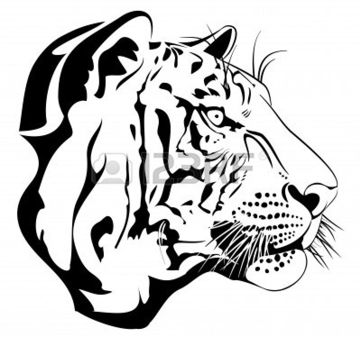 1200x1122 Tiger Clipart Drawn