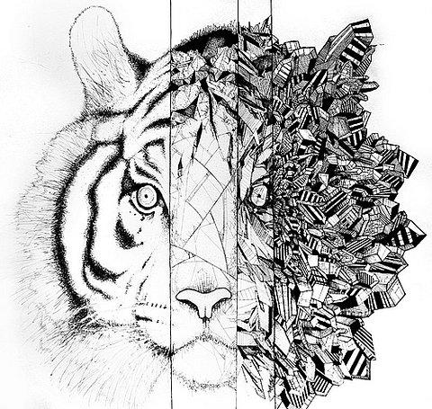 480x455 Geometric Tiger City All Geometric Tigers