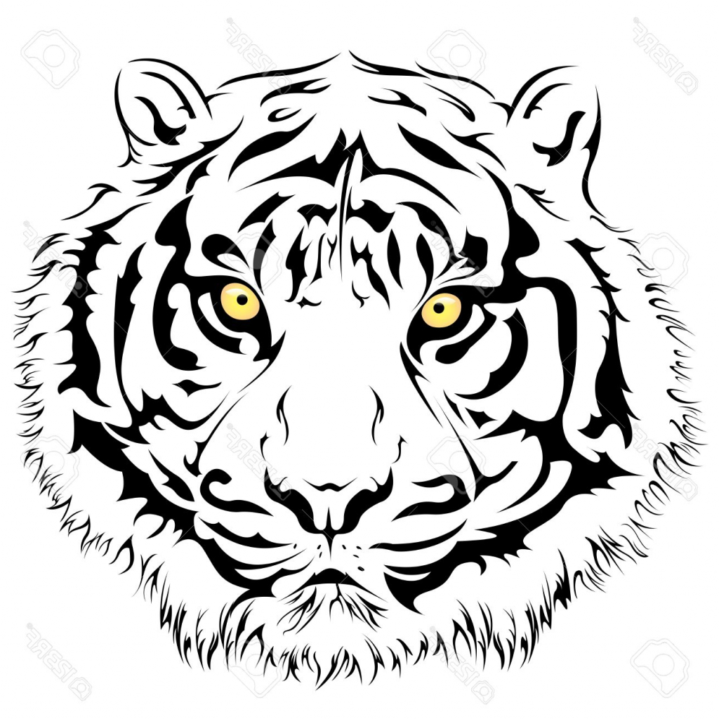 tiger face template - Ideal.vistalist.co