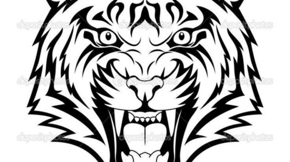 570x320 Tiger Face Drawing How To Draw A Tiger Tiger Head With Marker