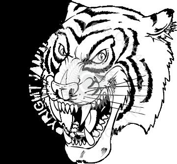 361x335 Tiger Head Facing Left
