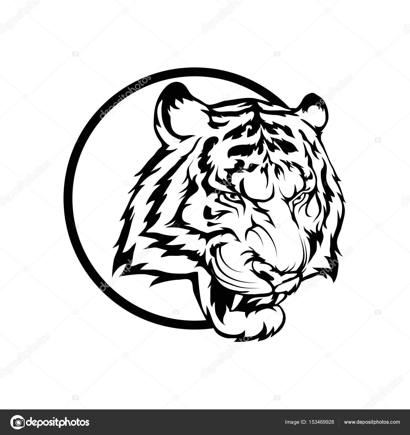 Tiger Head Line Drawing at GetDrawings.com | Free for personal use ...