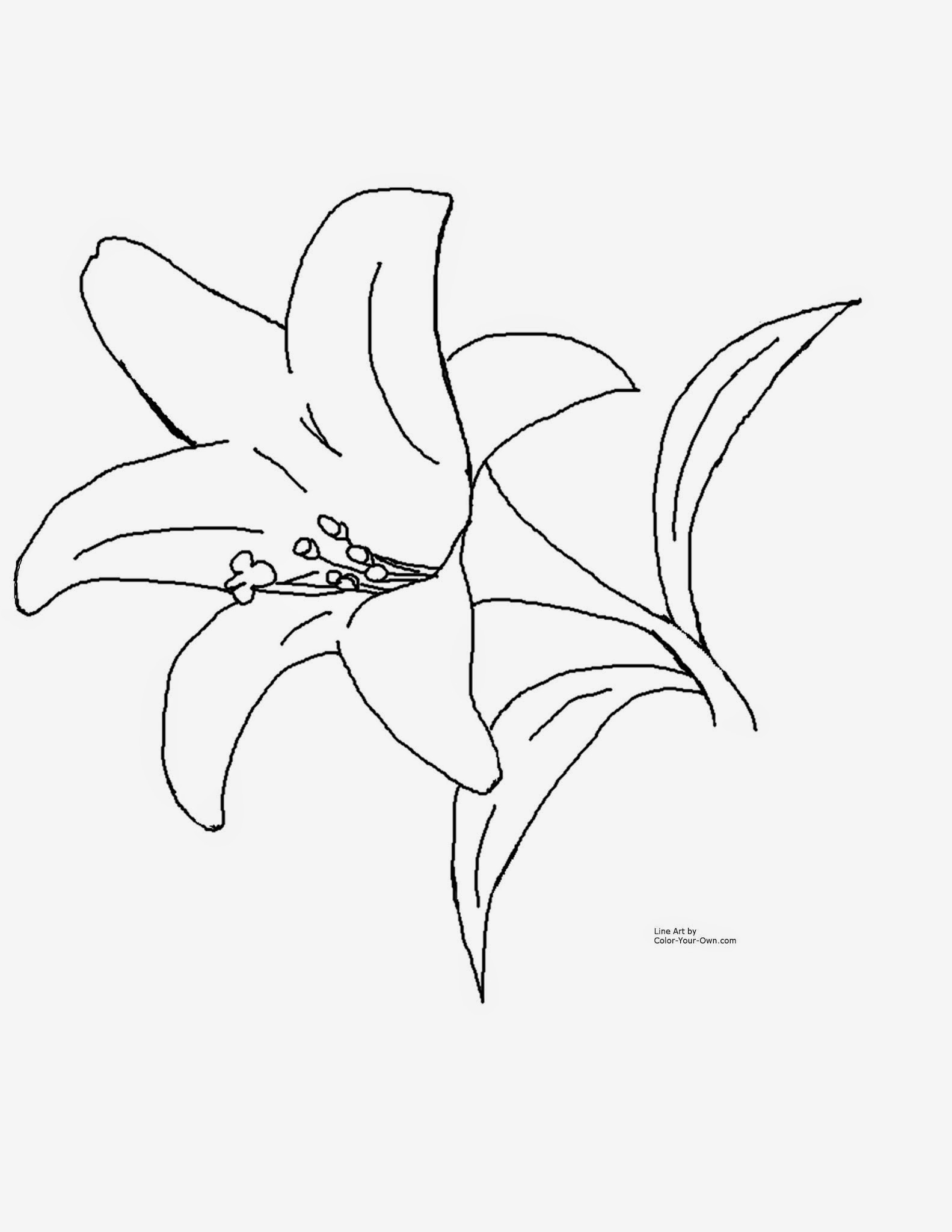 princess tiger lily coloring pages - photo#8