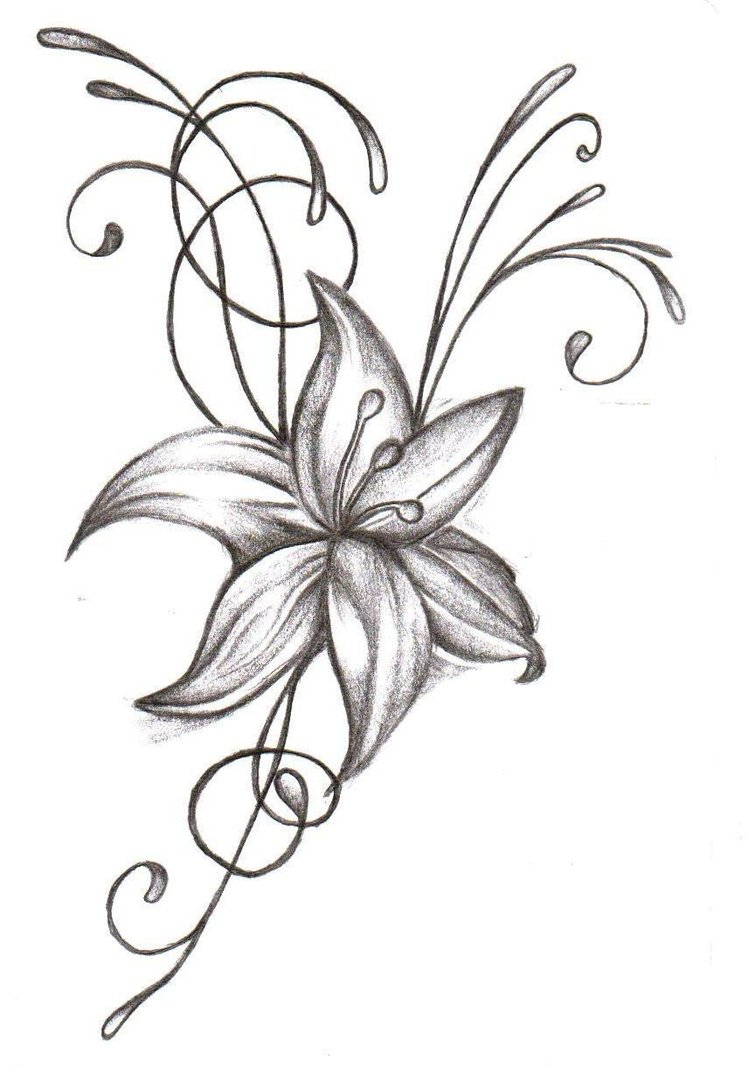 Tiger lily flower drawing at getdrawings free for personal use 748x1067 dragonfly with flower tattoo art flower tattoos tattoos izmirmasajfo