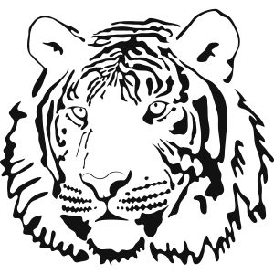 300x300 Adult Kids Tiger Drawing Tiger Drawing For Kids. Tiger Face