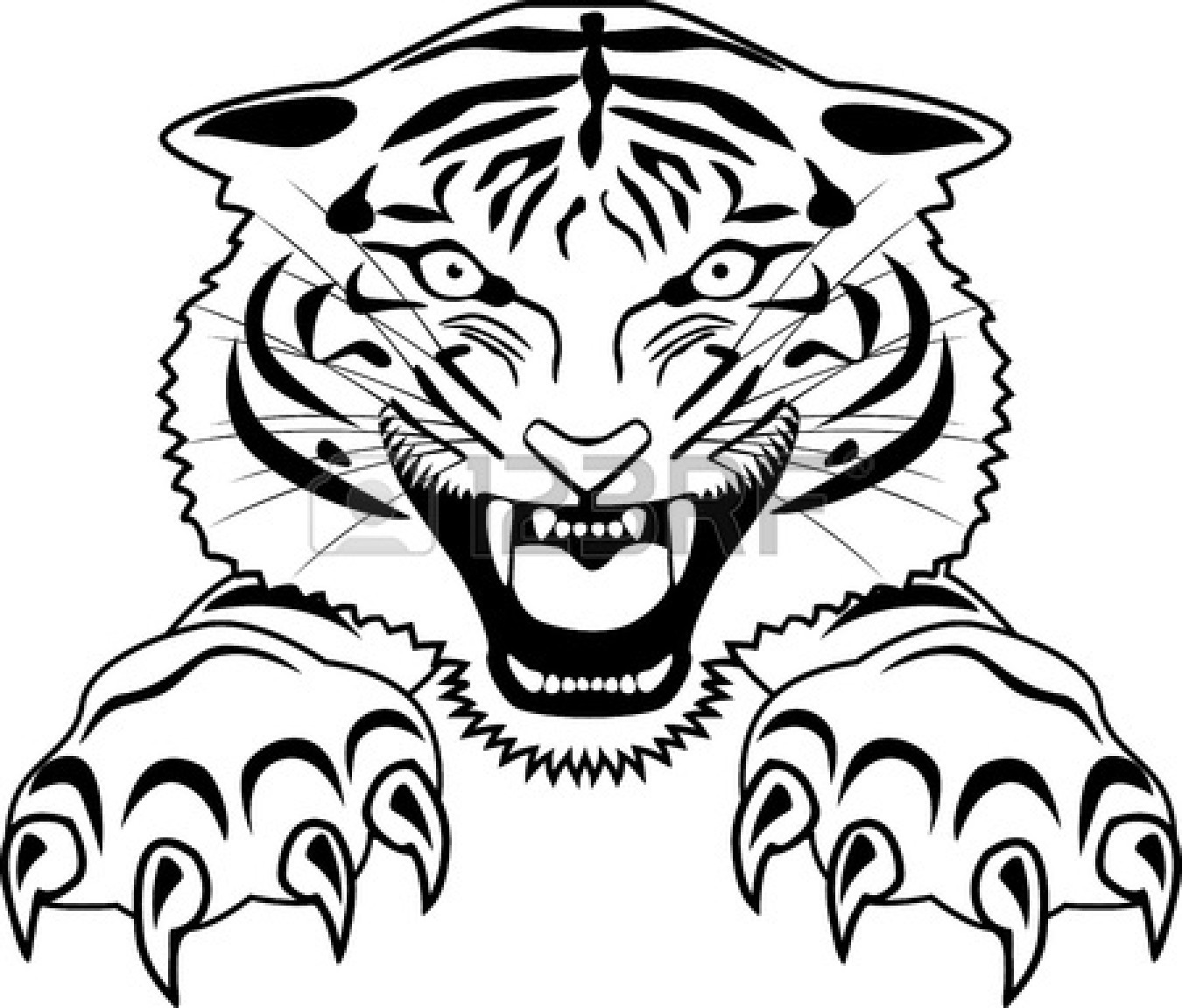1350x1152 Roaring Tiger Outline Clipart