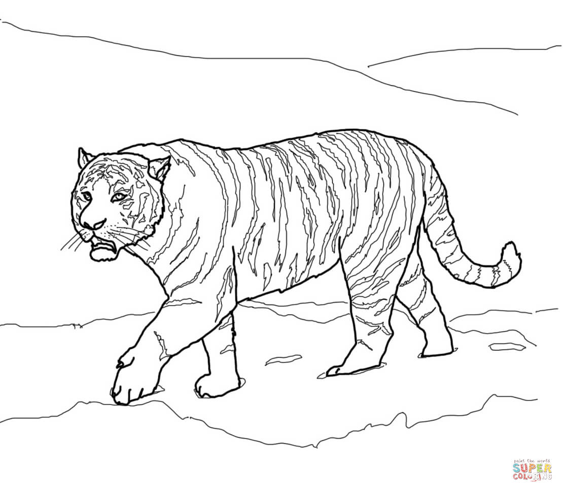 1110x970 Siberian Or Amur Tiger Coloring Page Free Printable Coloring Pages