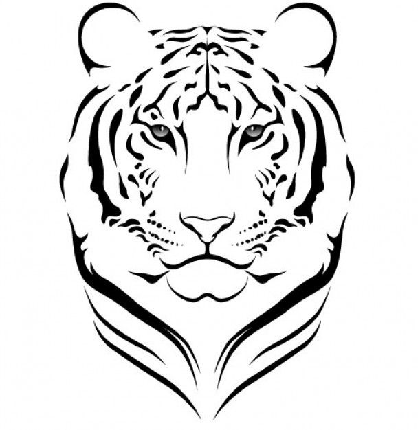608x626 White Tiger Clipart Tiger Outline