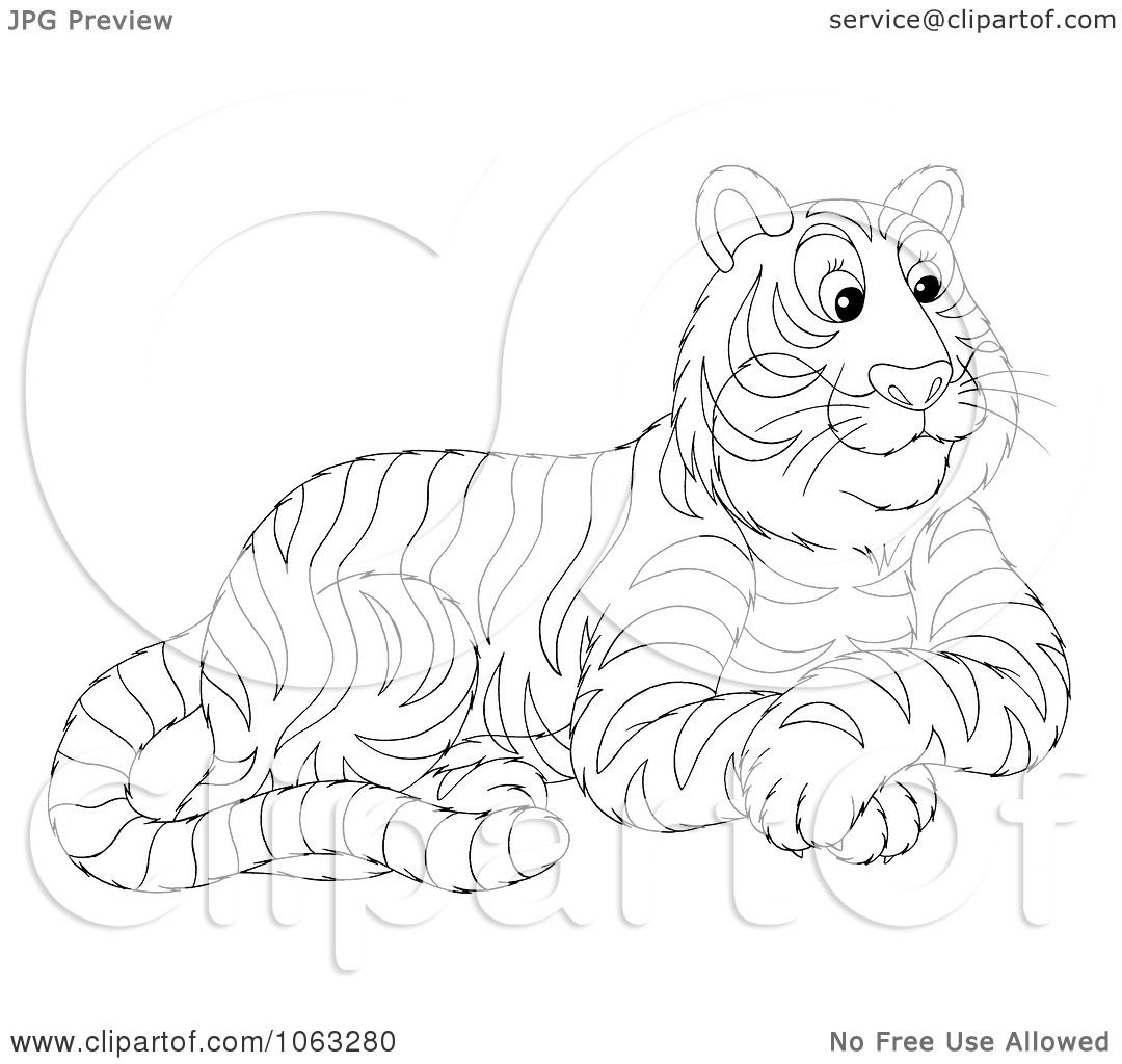 1080x1024 Clipart Seated Tiger Outline
