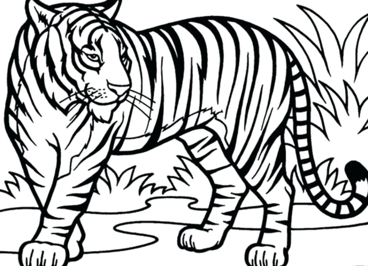 1200x868 Coloring Pages Christmas Ornaments Tiger Desktop Wallpaper White