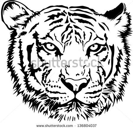 450x437 Drawn Tigres Tiger Line
