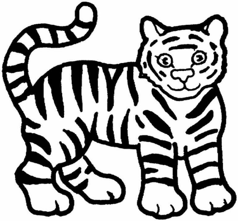 770x716 Tiger Outline 299169