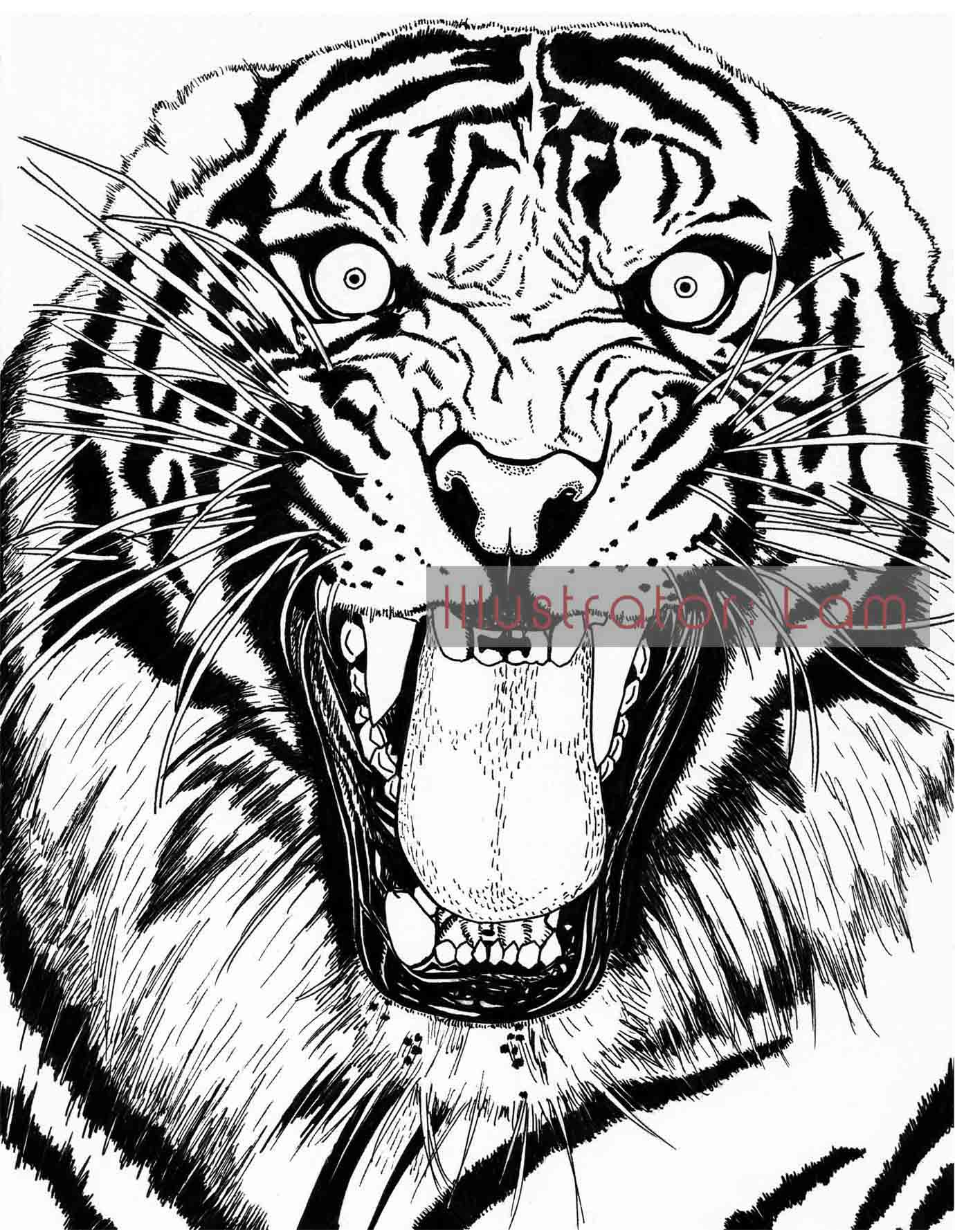 1380x1777 Year Of The Tiger 2010! Better Late Than Illustrator Lam