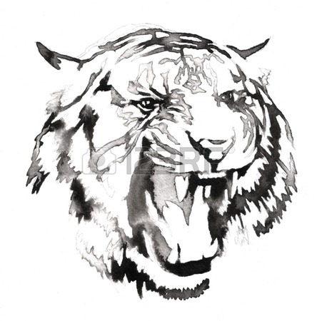 444x450 Black And White Painting With Water And Ink Draw Lion Illustration