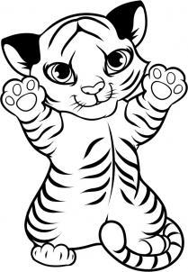 209x302 How To Draw A Tiger Cub, Tiger Cub Step 9 Tiger Party