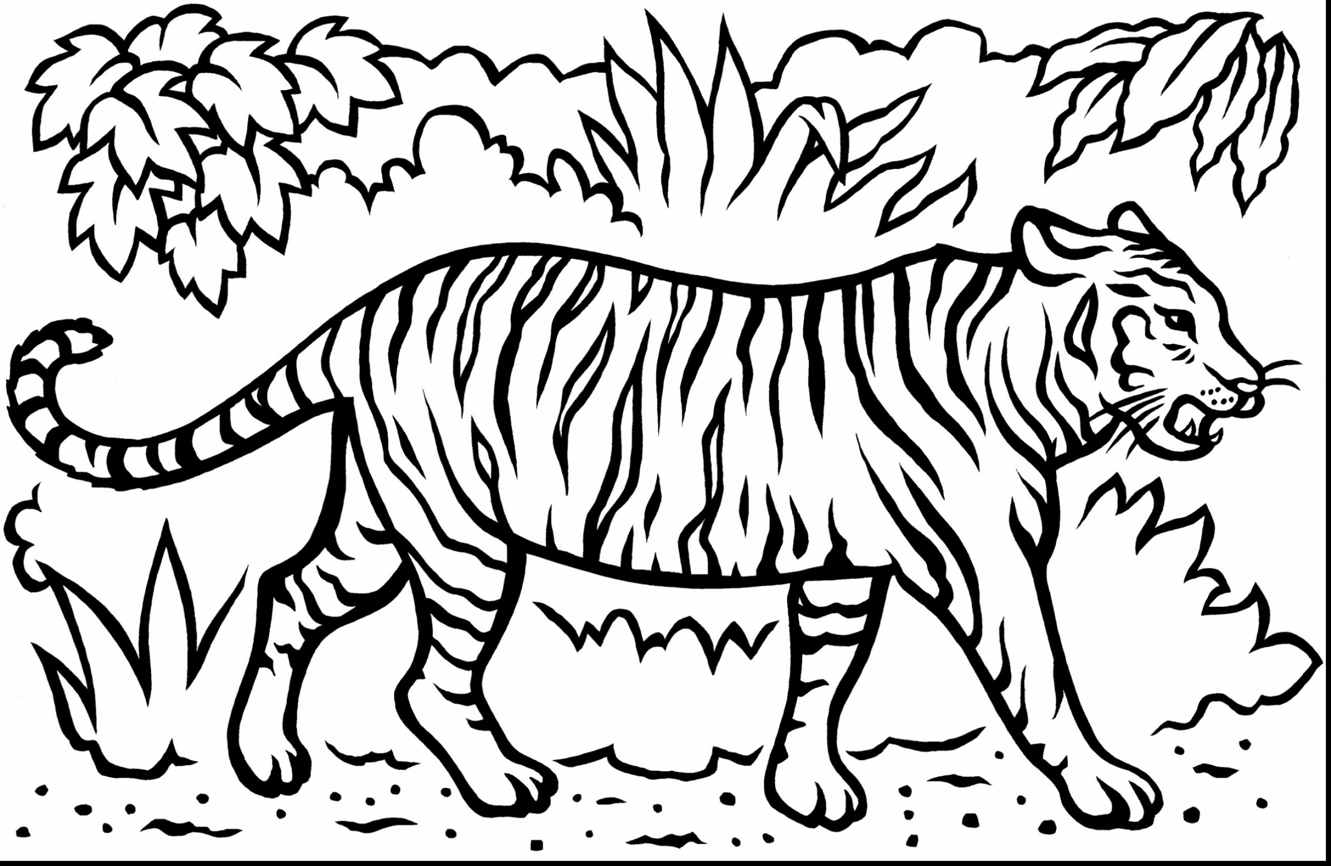This is a picture of Bewitching Free Tiger Coloring Pages