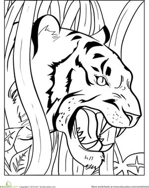 301x381 Growling Tiger Worksheet