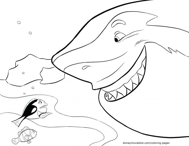 618x478 Draw Shark Coloring Pages With Additional Picture Page Sand Tiger