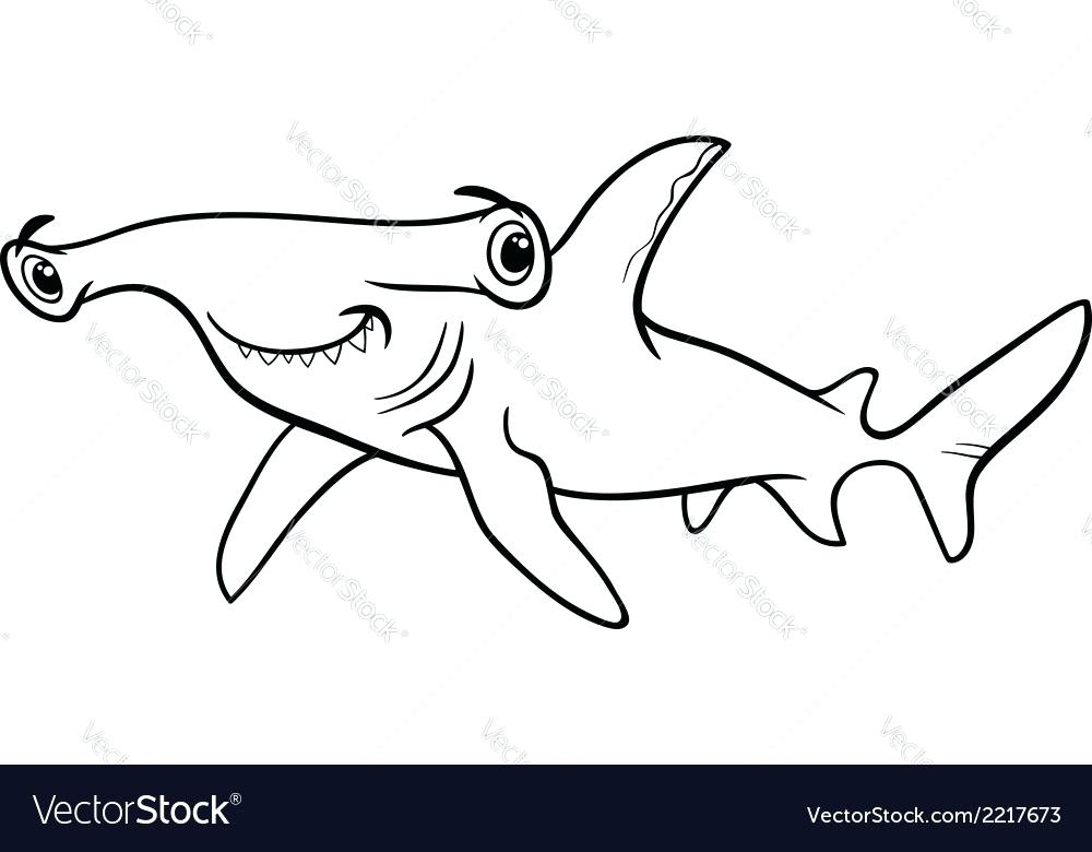 1000x780 Hammerhead Shark Pictures To Color Coloring Shark Pin Drawn Tiger