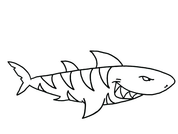 600x454 Shark Coloring Animals Shark Coloring Page Tiger Shark Coloring