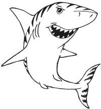 Tiger Shark Drawing at GetDrawings | Free download