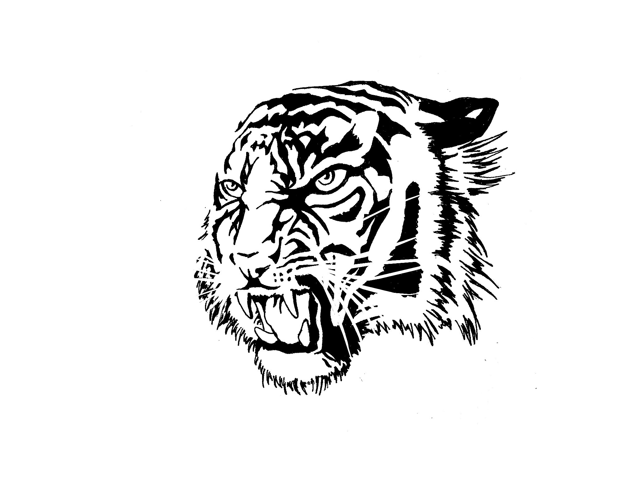 2048x1536 Tiger Tattoo Images Wallpaper