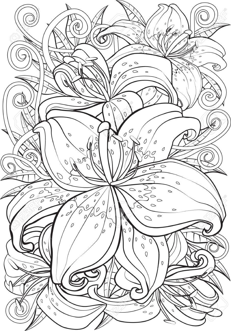 Tigerlily Drawing