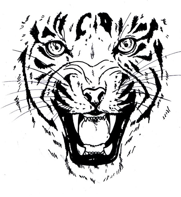600x651 Tiger Face Stencil Group