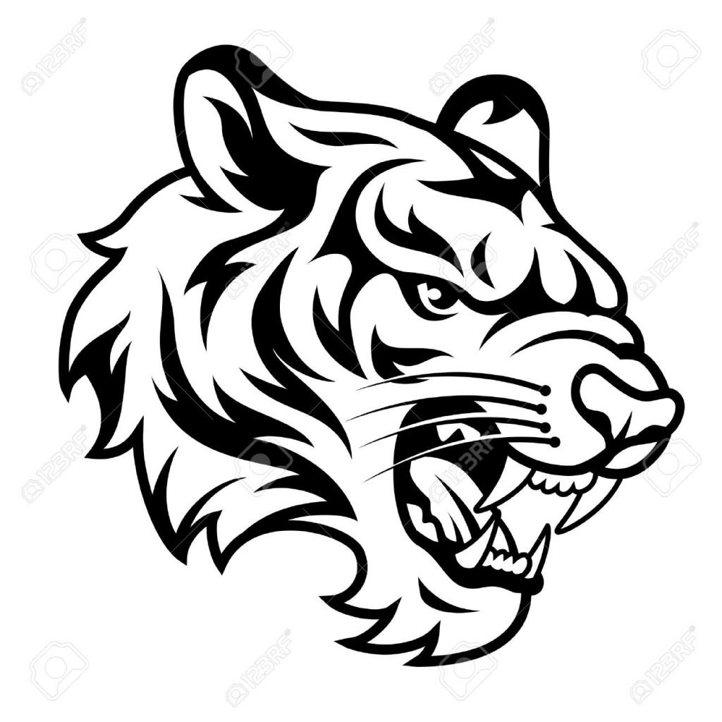 1024x1024 Tiger Side Face Sketch
